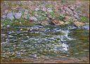 Rapids on the Petite Creuse at Fresselines MET DT226477.jpg