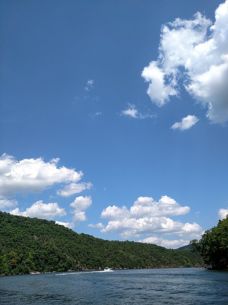 File:Raystown Lake August 2016 - panoramio - Ron Shawley (36).jpg