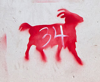 Red goats of Kingston
