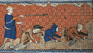 Post-classical history - 14th century miniature of serfs harvesting wheat with reaping-hooks.
