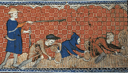 Depiction of harvesting in the August calendar page of the Queen Mary Psalter (fol. 78v), ca. 1310 Reeve and Serfs.jpg