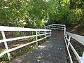 Regent's Canal, Islington 3375.JPG
