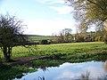 River Ebble - geograph.org.uk - 602993.jpg