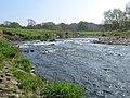 River Wear - geograph.org.uk - 1333798.jpg