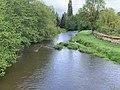 Rivière Cousin vue depuis Pont Cousin - Vault-de-Lugny (FR89) - 2021-05-17 - 2.jpg