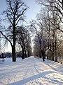 Road - panoramio - Ainars Brūvelis.jpg