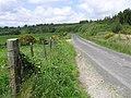 Road at Creehennan - geograph.org.uk - 1342281.jpg