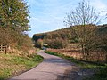 Road through Spring Dale - geograph.org.uk - 1567971.jpg