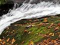 Roaring Fork Falls Black Mountain Campground Pisgah Nat Forest NC 4370 (24096576968).jpg