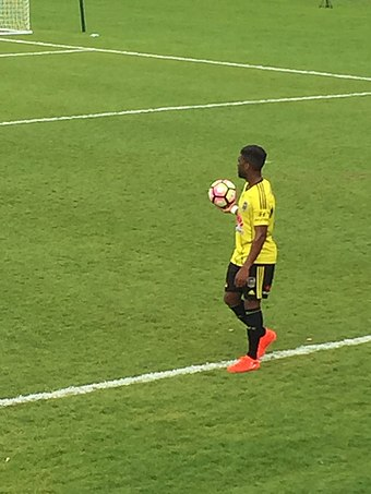 Bonevacia playing for Wellington in 2016 Roly Bonevacia.jpg