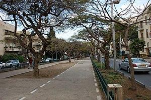 Rothschild Boulevard - Bike lane on Rothschild Boulevard