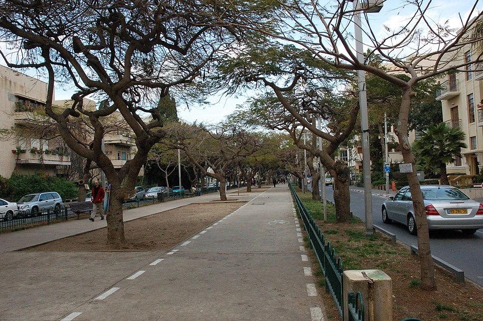 Rothschild Boulevard bike lane