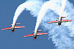 Royal Jordanian Falcons (5132712708).jpg
