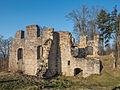 Ruine-Rauheneck-270216-2278312.jpg