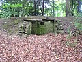 Ruined building in the woods - geograph.org.uk - 1373206.jpg