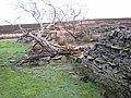 Ruins of Waskerleypark House - geograph.org.uk - 297636.jpg