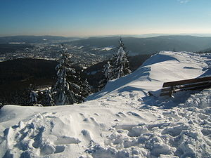 Bench at the top of the Ruppberg, Thuringian Fores