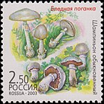 Russia stamp 2003 № 877.jpg