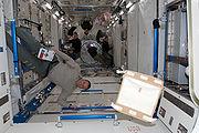 Astronautas da missão STS-124 trabalham na configuração do Laboratório Kibo