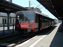SA102-001Jelenia