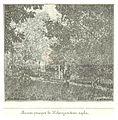 SAPUNOV(1893) -74- p585.jpg
