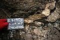 S of Mt Jackson felsic-mafic breccia-andesite contact.jpg