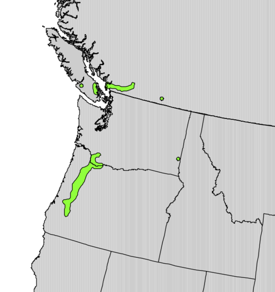 File:Salix sessilifolia range map.png