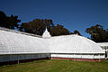 San Francisco Conservatory of Flowers-39.jpg