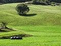 San Vicente - panoramio (1).jpg