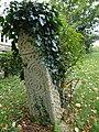 Saxon stone (geograph 3717278).jpg