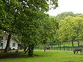 Schaerbeek-Parc Josaphat-Anes-001.JPG