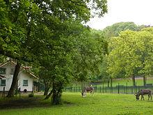 Liste des parcs et jardins de bruxelles wikip dia - Roi du matelas schaerbeek ...