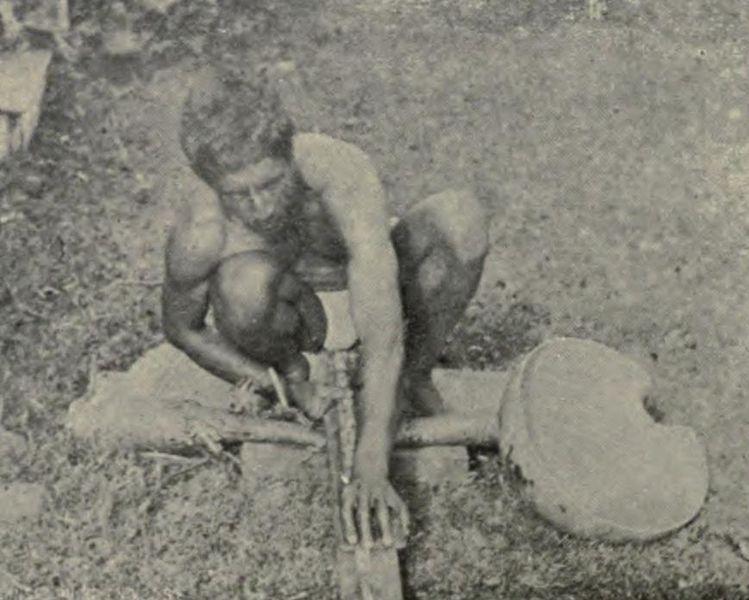 File:Scraping Olonā, Memoirs Bishop Museum, Vol. I, Fig. 43.jpg