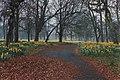 Sefton Park 8.jpg