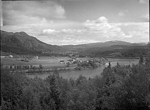 Selfors - View of Selfors in 1948