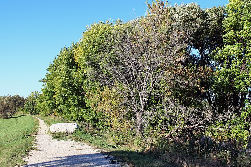File:Selkirk Park, Manitoba - panoramio (23).jpg