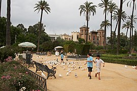 Sevilla - Plaza de América - Palomas - 20070519-14.jpg