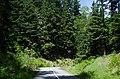 Seymour Valley Trailway - panoramio (6).jpg