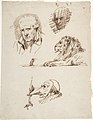 Sheet of Studies- Three Male Heads, a Lion and a Mouse MET DP805794.jpg