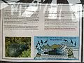 Shelter Short-tailed Shearwater Info Board - panoramio.jpg