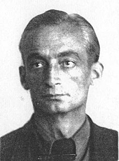 Siegfried Knemeyer German engineer and aviator