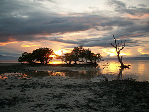 Larena - Image: Siquijor sunset