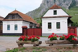 Houses in the village center