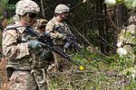 Sky Soldiers conduct live-fire training in Ukraine 150806-A-DU810-038.jpg