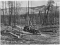 Slavage loggin in progress on the Tunk Creek logging unit in the NE corner of the Colville Reservation. In the... - NARA - 298688.tif