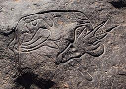 Sleeping Antelope Tin Taghirt