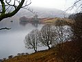 Small Bay on Loch Katrine - geograph.org.uk - 687881.jpg
