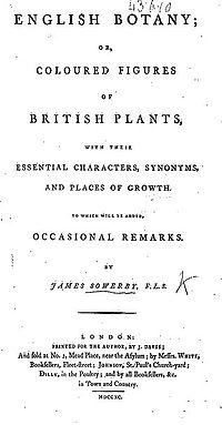 English Botany cover