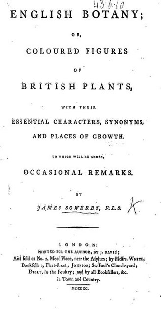 English Botany - Title page from the book