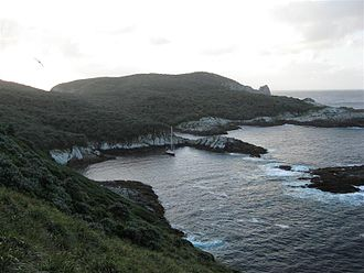 Snares Islands / Tini Heke - Ho Ho Bay - with Yacht 'Tiama' anchored inside - a view looking north